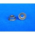 Hex Flange Nut, 6mm