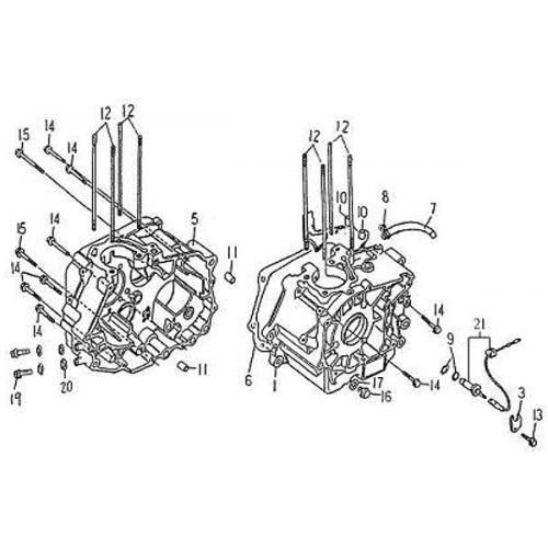 Crankcase (Barossa Silverhawk 250)