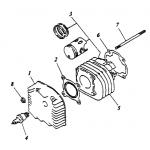 Cylinder | Cylinder Head
